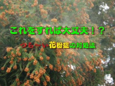 花粉症の対処法